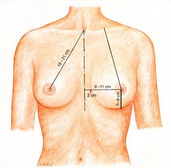 Фотогалерея женской груди, самый длинный член глубоко в глотке с яйцами